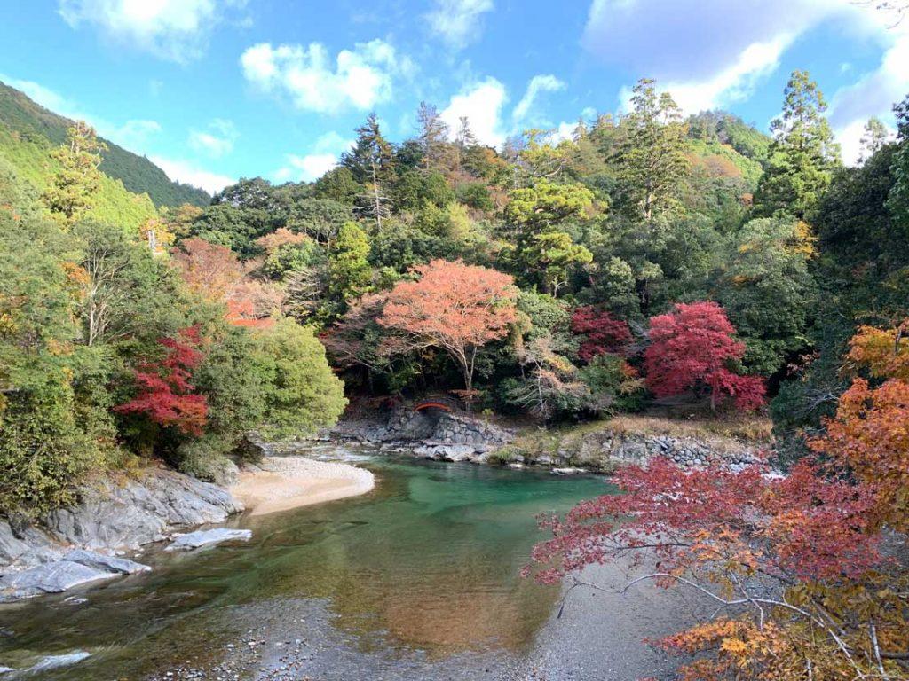 丹生川上神社 紅葉
